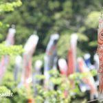 [親子お写真会ギャラリー]こいのぼりと一緒!@鎌倉中央公園【2018.05.01】
