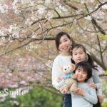 卒業式シーズンに咲く桜